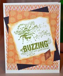 CTMH 492 small buzz DSC_0350
